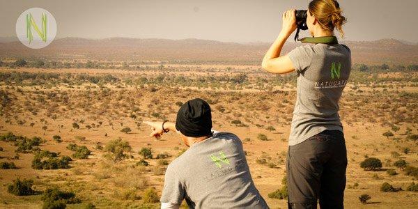 Safari Guide Ausbildung in Südafrika & Botswana